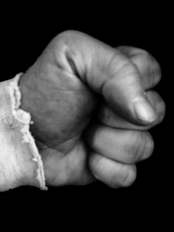 Fist (b&w)